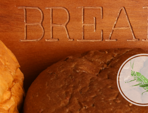 Are Insects the Missing Ingredient to Better Gluten Free Bread?